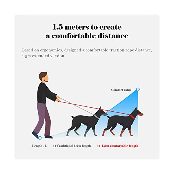 QQPETS Dog Leash and Collar Set for Medium or Large Dogs Training Walking, Adjustable Collar with Breakaway Buckle and… Click on image for further info. 5