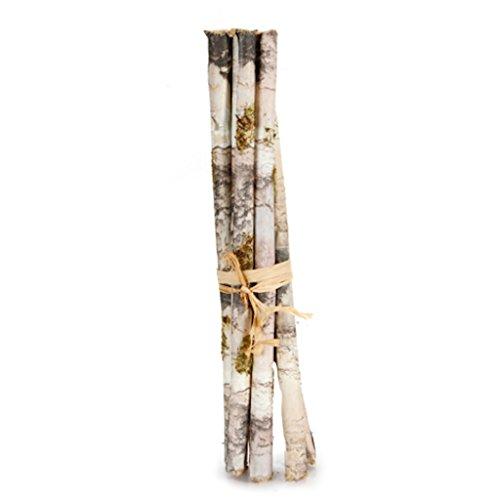 6 White Faux Birch Logs 12  Each Table Fall Christmas Thanksgiving