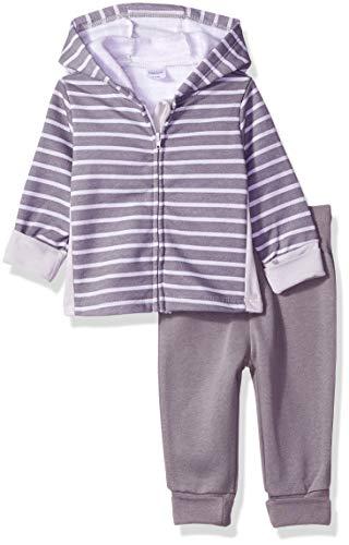 Hanes Ultimate Baby Flexy Adjustable Fit Jogger with Zippin Fleece Hoodie, Grey Stripe, 12-18 ()