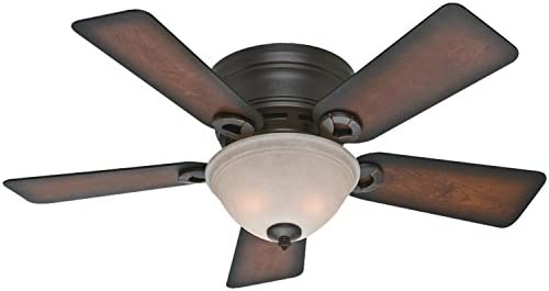 Hunter Fan Company 51023 Hunter Conroy Indoor Low Profile Ceiling Fan with LED Light and Pull Chain Control, 42 , Onyx Bengal