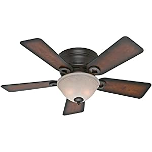 10. Hunter Fan Company 51023 Conroy 42-Inch Onyx Bengal Ceiling Fan with Five Burnished Mahogany Blades and a Light Kit