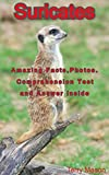 Suricates: Kids Picture Book and Facts about Suricates: Amazing Facts and Photos