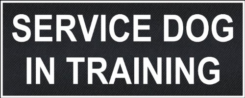 """Service Dog In Training"" Medium nylon velcro patches by Dean & Tyler."