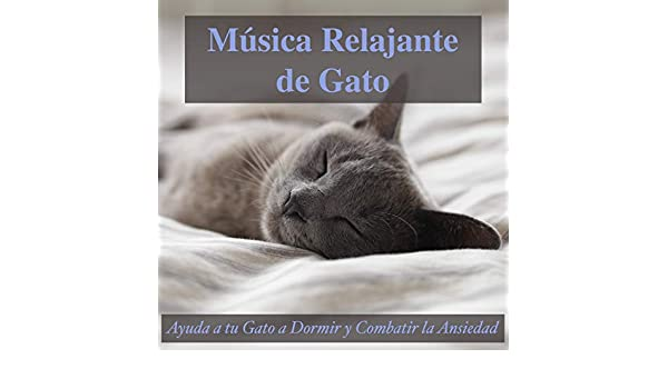 Cojin Comodo by Relax My Kitten, and Cat Music Dreams RelaxMyCat on Amazon Music - Amazon.com