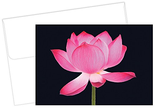 Great Papers! Opening Petals Thank You Note Card and Envelope, 4.875