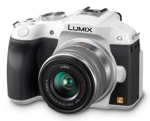 Panasonic ミラーレス一眼カメラ ルミックス G6