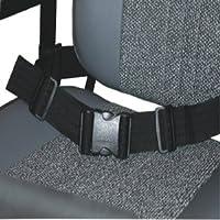 WHEELCHAIR SEAT BELT - Wheelchair safety lap strap