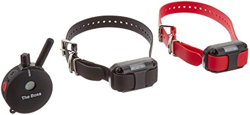 The Boss E-Collar 1 Mile Big 2 Dog Remote Trainer FREE INCLUDED Bungee E-Collars FREE SHIPPING