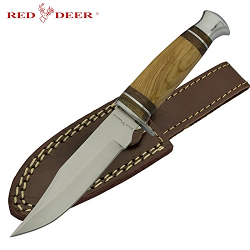 Red Deer Fixed Blade Hunting Knife with Olive Wood Handle