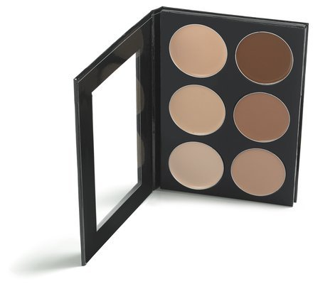 Mehron Makeup Celebré Pro-HD Conceal-It Palette, 6 Shades