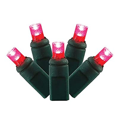 """Vickerman Twinkle Light Set Features 50 LED Lights on Green Wire with 6"""" Bulb Spacing, 25', Magenta"""