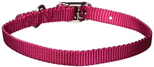 k Nylon Deluxe Dog Collar, 3/8 by 14-Inch, Raspberry (Nylon Dog Collar Raspberry)