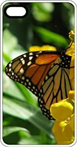 Monarch Butterfly Drinking Nectar Clear Plastic Case for Apple iPhone 4 or iPhone 4s