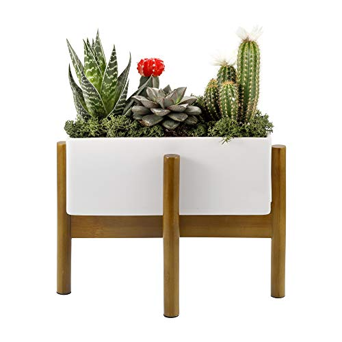 Succulent Planter with Bamboo Stand, Large 10 Inch Long Rectangular Garden Pot for Window Box or Decorative Indoor Centerpiece | Mid Century Ceramic Cactus and Plant Container with Drainage