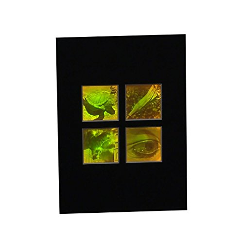 3D Nature 4-up 2-Channel Hologram Picture (MATTED), Collectible Polaroid Photopolymer (Matted Nature Picture Art)