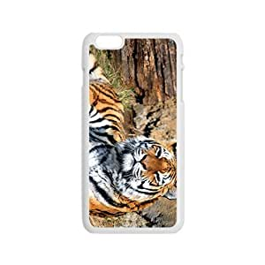 The Tiger on The Rock Hight Quality Plastic Iphone 5C hjbrhga1544