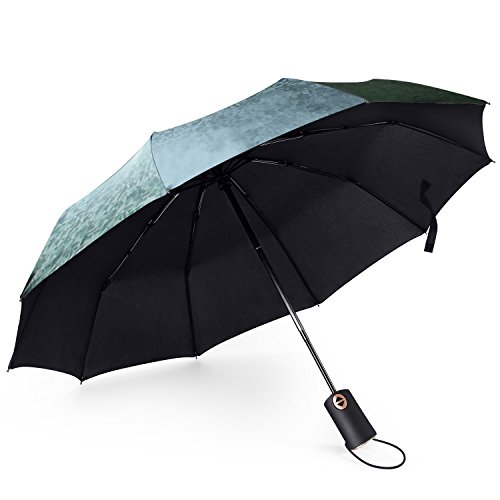 Wumal Windproof Sunlight proof and Water Proof Titan Travel Umbrella with Teflon VC Coating Automatic Open Durable Light Weight Umbrella - Unbreakable, Exquisite Carry Bag Included