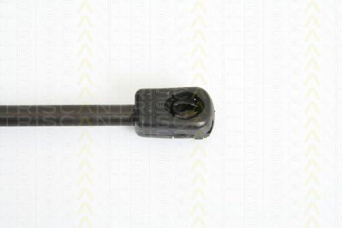 Triscan 871043225 Gasfeder Kofferraum