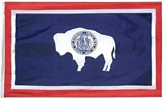 product image for All Star Flags 4x6' Wyoming Nylon State Flag - All Weather, Durable, Outdoor Nylon Flag