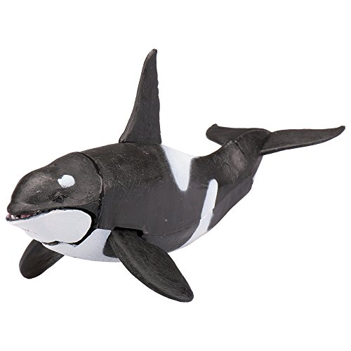 Animal Pack Baby Killer Whale Calf Mini Figure Play Toy Kids Ocean Sea Creature Animals & Dinosaurs