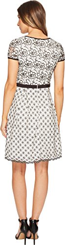 Adrianna Papell Women's Twin Lace Fit and Flare Dress Ivory/Black 10 by Adrianna Papell (Image #2)