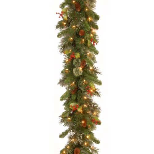 National Tree 9 Foot by 12 Inch Wintry Pine Garland with Red Berries, Cones and Snowflakes and 100 Clear Lights (WP1-300-9B-1) (Outdoor Range Garland)