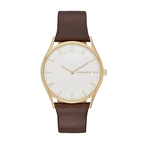 Skagen Mens Holst Analog Dress Quartz Watch (Imported) SKW6225