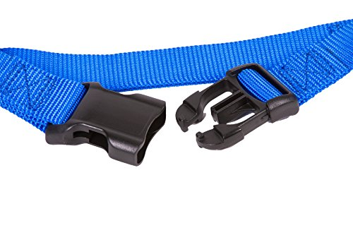 Image of GoGo Pet Products GoGo 3/8-Inch Martingale Dog Collar, X-Small, Blue