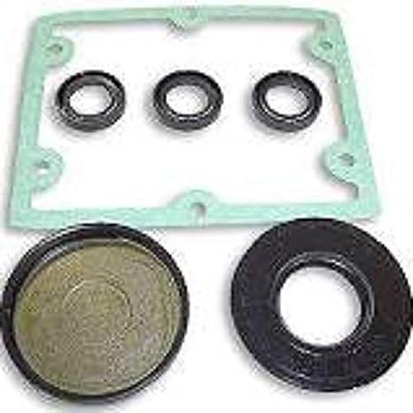 Amazon com: Pronto PSI Replacement Oil Seal Kit Fits AR 1872 (Annovi