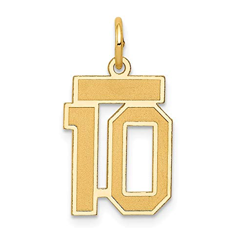 JewelrySuperMart Collection 14k Yellow Gold Number Ten Charm Pendant with Satin Finish - # 10 - Yellow Gold - ()