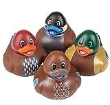 Best Rhode Island Novelty Gags - Rhode Island Novelty Decoy Style Rubber Ducks | Review