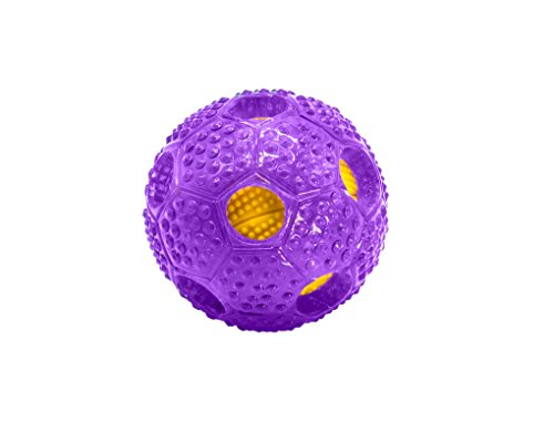 Bonpet Squeaker Ball Dog Toy, Interactive Dog Chew Toys,Biting for Medium or Large Dog (Monkey Tail Teaser)