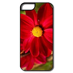 IPhone 5S Case, Red Fall Flower White/black Case For IPhone 5S