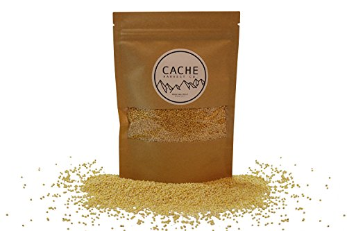 Non-GMO Gluten-Free Hulled Millet | 100% Organic | The World's Finest Millet | Grown in the Rocky Mountains | Non-Irradiated | Resealable Packages | Cache Harvest Co. Premium (16 Ounces)