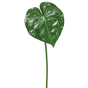 "26.5"" Exotic Anthurium Leaf Spray Green Variegated (Pack of 12) 32"
