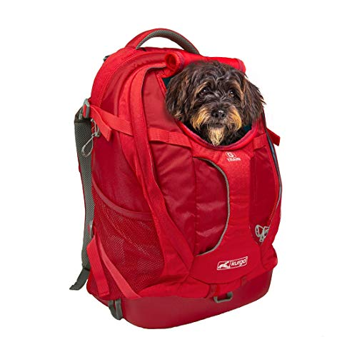 (Kurgo Dog Carrier Backpack for Small Pets - Dogs & Cats | TSA Airline Approved | Cat | Hiking or Travel | Waterproof Bottom | G-Train | K9 Ruck Sack | Red | Grey (Chili Red))