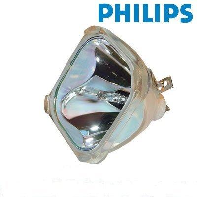 FI Lamps Compatible RCA HD61LPW164 Rear projection TV Lamp 265866 [並行輸入品]   B07DLMV8D3