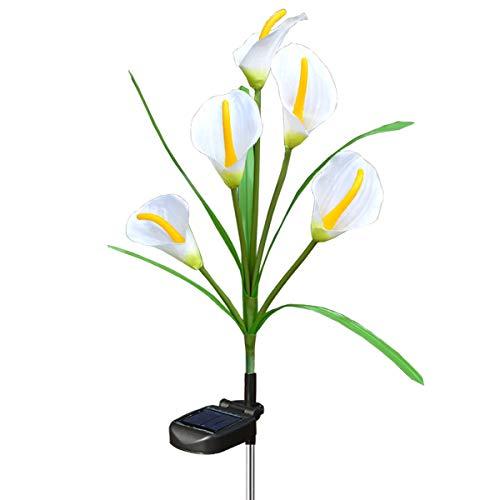 Chasgo Solar Decorative Garden Stake Light Outdoor, Led Lighting Calla Lily Flower Solar Graden Light Outdoor Stake, White Cally Lily Flower by Chasgo
