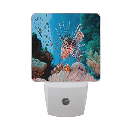 (Night Light Lionfish are Destroying Our Coral Reefs Night Lamp LED Sensor Auto on/Off Led Plug in Wall Lights 2 Pack)