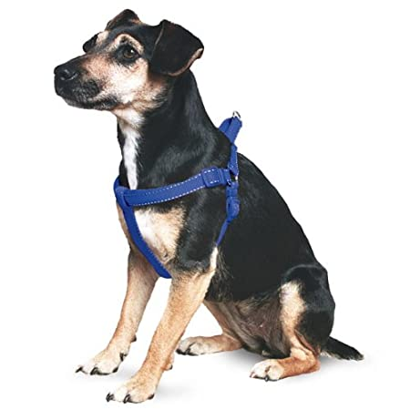 Ancol Padded Nylon Dog Harness Red M 54-67cm