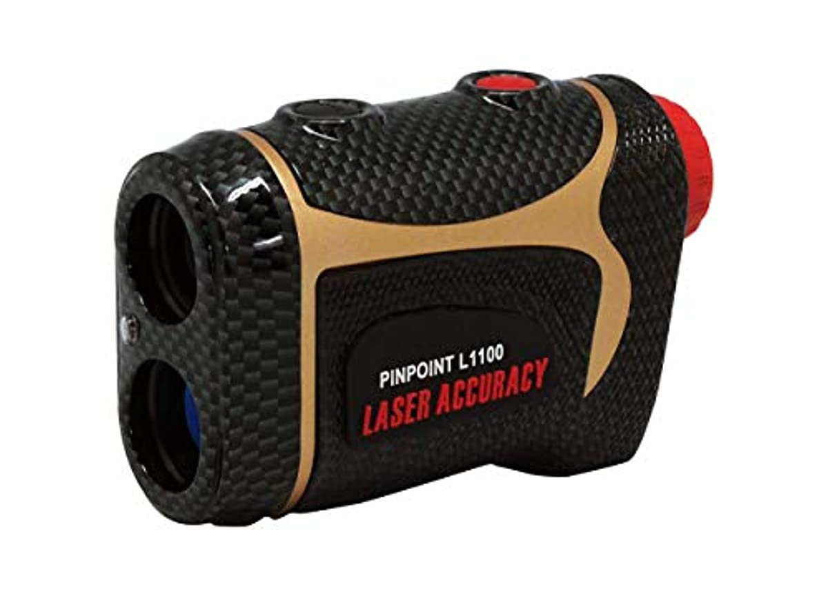[해외] PINPOINT L1100