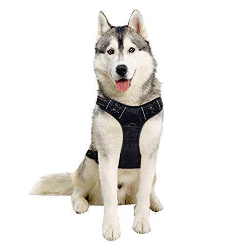 TAIL UP Dog Harness - Adjustable No-Pull Pet Harness Mesh Vest, Easy On/Off Mesh Harness Small Medium Large Dogs - Easy Control in Walking Hiking Training Medium Black]()