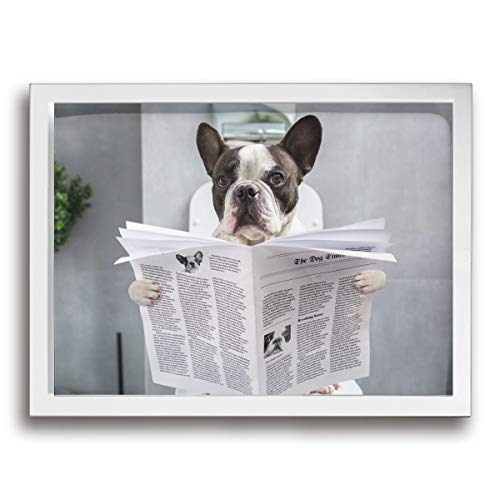 Baohuju Picture Canvas Art Prints French Bulldog Sitting On A Toilet Seat With The Newspaper Artwork For Living Room Bedroom Home Decorations Modern Framed Ready To Hang