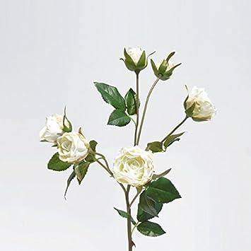 HUAYIFANG Emulation Blume Silk Blume Getrocknete Blumen Volumen Der ...
