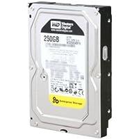 WESTERN DIGITAL WD2503ABYX RE4 250GB 7200 RPM 64MB cache SATA 3.0Gb/s 3.5 internal hard drive (Bare Drive)