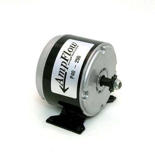 AmpFlow P40-250 Brushed Electric Motor, 250W, 12V, 24V or 36