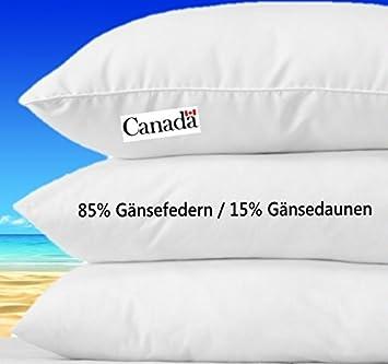 CANADA Kopfkissen Daunen Federn 80 X 80 Cm, 1000g 15% Gänsedaunen/ 85%