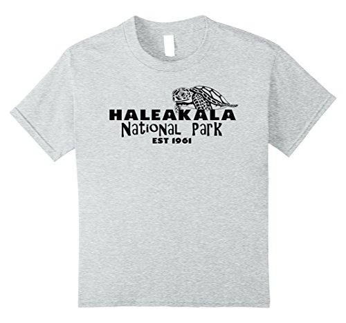 unisex-child Haleakala National Park Explore Journey Adventure Life Shirt 8 Heather Grey
