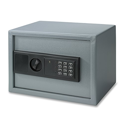 Neiko 61011 Digital Electronic Security