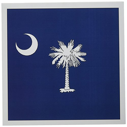 3dRose State Flag of South Carolina (PD-US) - Greeting Cards, 6 x 6 inches, set of 12 (gc_55323_2)